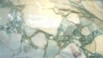 Breccia Stazzema Marble